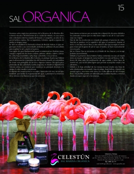 Taste Magazine # 1