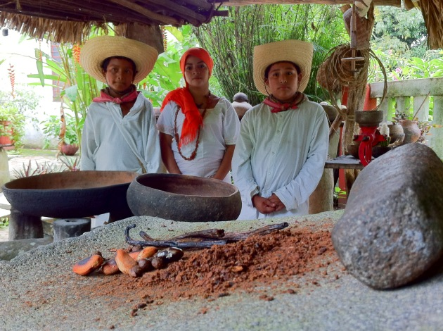 cacaotera