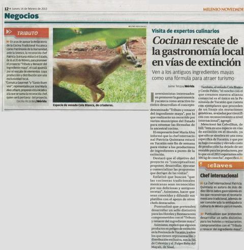 Periódico Inicio Patricia