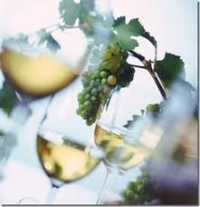 rene renteria vino blanco