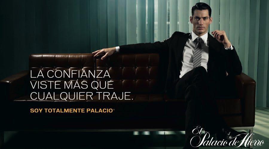 palacio 14